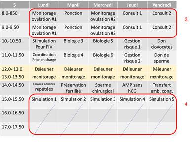 Fig. 2 Planning de la 2e semaine